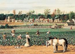 #FARMERGATE: A Fable